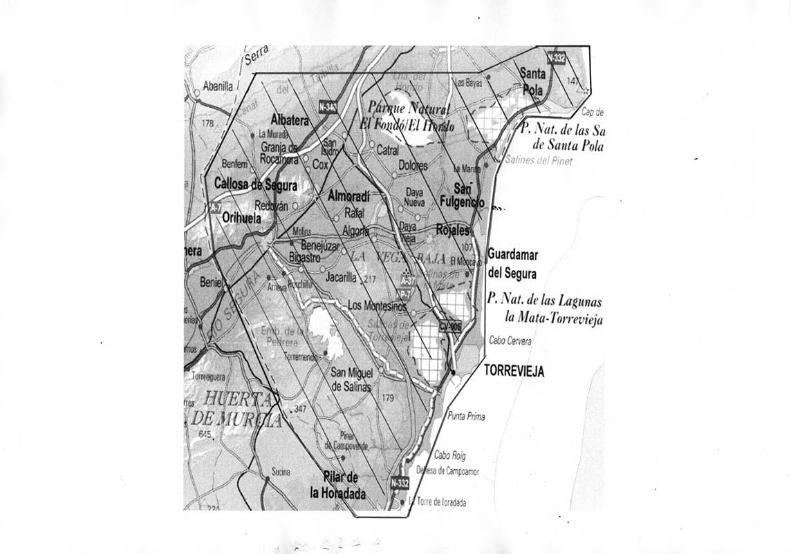 mapa de reparto de la licoreria guardamar